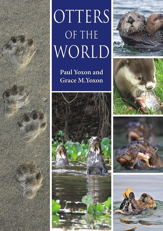 またはどちらかもつれ滅多Otters of the World