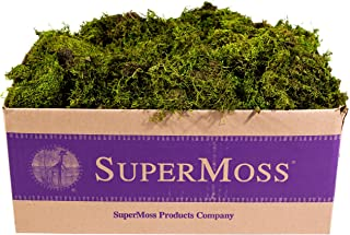 Best fresh moss for wreath making Reviews