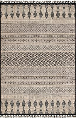 """nuLOOM Janelle Modern Aztec Indoor/Outdoor Area Rug, 7' 10"""" x 10' 10"""", Grey"""