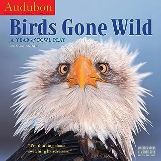 Audubon Birds Gone Wild Calendar 2018 [12'' x 12'' Inches]