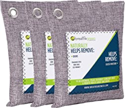 Breathe Green Bamboo Charcoal Odor Eliminator Bag (3-Pack), Activated Charcoal Odor Absorber, Natural Freshener Removes Odors and Moisture, Odor Eliminator for Home, Pets, Car, Closet, Basement, RV