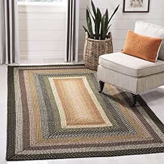 Safavieh Braided Collection BRD308A Hand Woven Blue and Multi Area Rug (9' x 12')