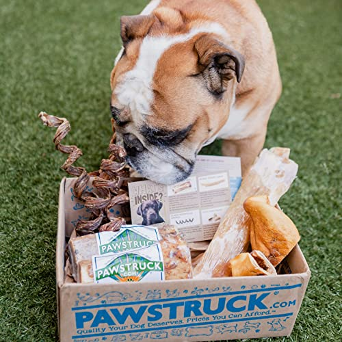 Pawstruck Natural Dog Chew Box