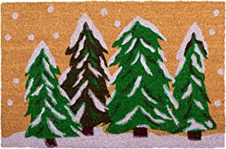 Calloway Mills 122251729 Winter Wonderland Doormat, 17