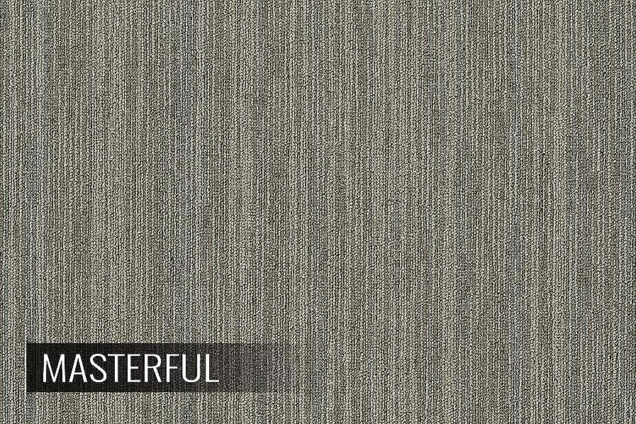 IncStores Shaw Intellect Carpet Tile 24