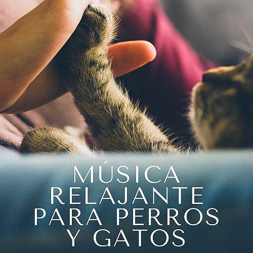 Música Relajante para Perros y Gatos