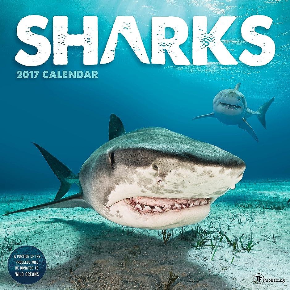 充電デコラティブ余暇Sharks 2017 Calendar