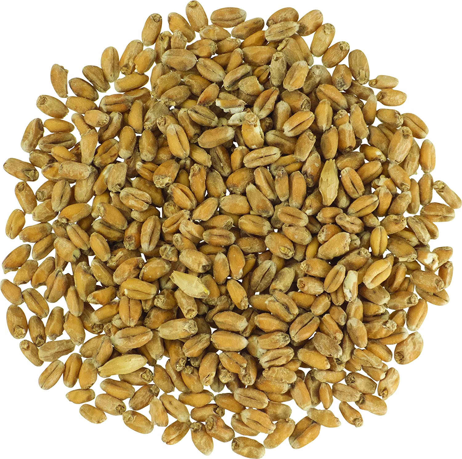 Malt - Briess Raw White Wheat Max 80% OFF 40 LB of Max 65% OFF Pack 1