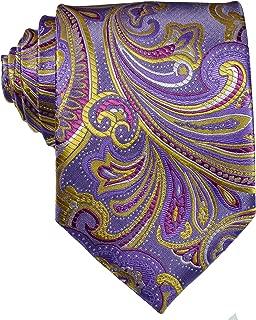 New Classic Men's Paisley Silk Tie Necktie
