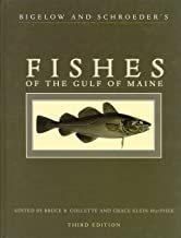 Best fishes of the gulf of maine Reviews