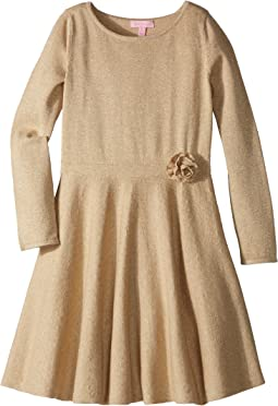 Carynn Sweater Dress (Toddler/Little Kids/Big Kids)