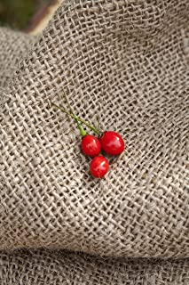 growing wiri wiri peppers