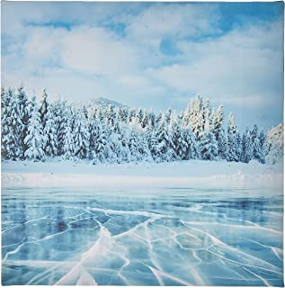 Decalac A Canvas Arts for Wall, Design of Frozen Lake in The Winter and Pine Trees in Ukraine, Canvs30-180144, No. 215