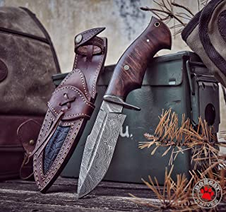 Bobcat Knives - 10-inch Overall, Beast Hunter, Hunting Bowie Knife - Full Tang Fixed Blade Damascus Steel - Walnut Wood Handle with Leather Sheath