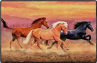 Brumlow Mills EW10315-20x34 Running Free Horse Rug, 1'8