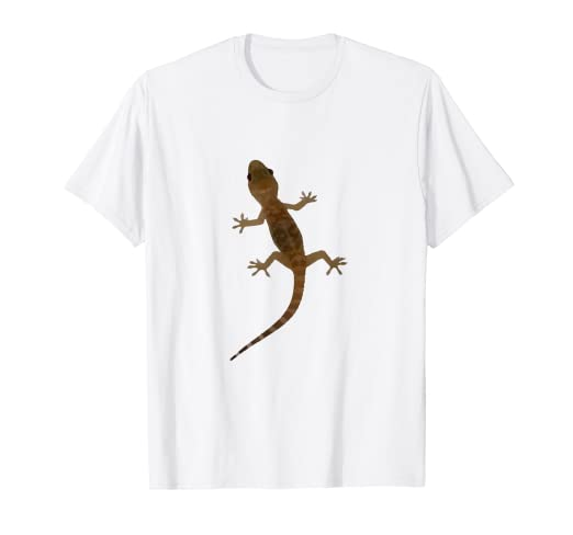 Amazon Com Mediterranean House Gecko Vector T Shirt Clothing