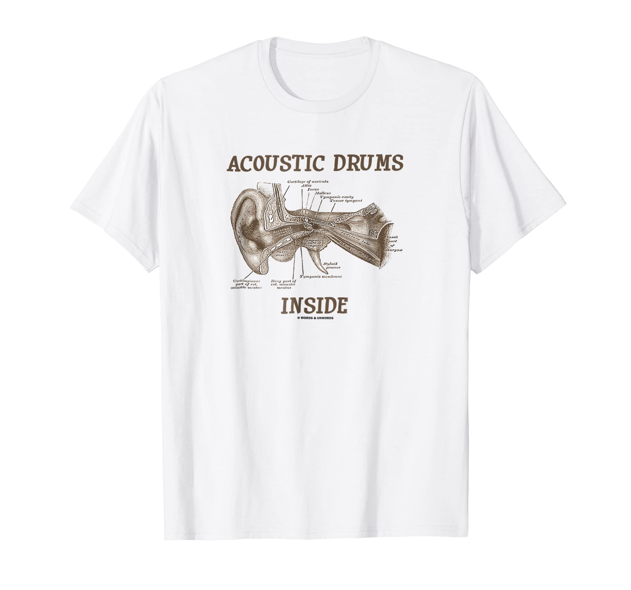 Amazon Acoustic Drums Inside Ear Anatomy Hearing Medical Humor