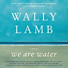 we are water audiobook