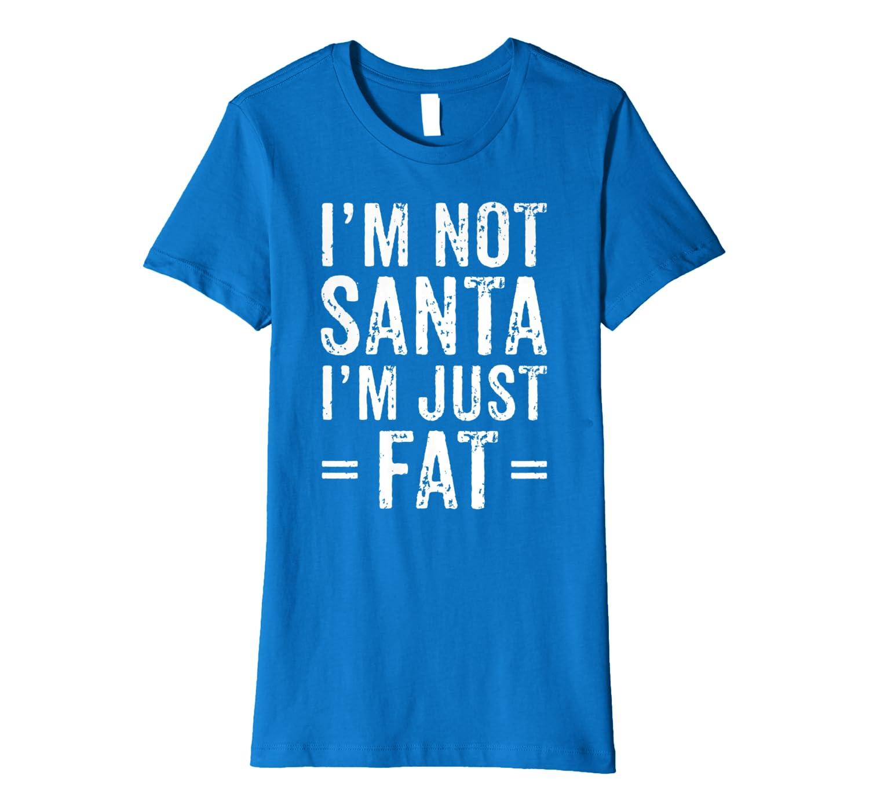 Funny Christmas Gift Big Fat Dad I'm Not Santa I'm Just Fat Premium T-Shirt