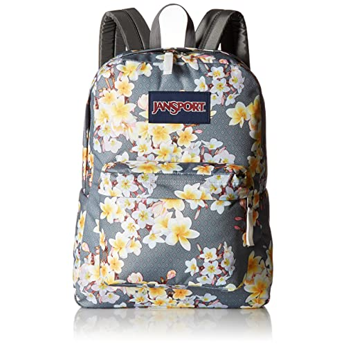 Cute School Flap Backpacks: Amazon.com