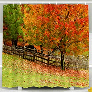 Capsceoll Fabric Shower Curtain Fall Image Changing Maple Tree Old Rustic Fence Room Copy Space a an 72X72 Inches with Free Hooks Fabric Bath Shower Curtain,Blue Green