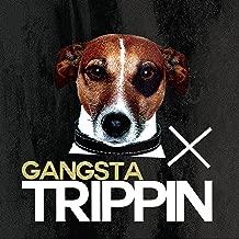 Best gangsta trippin instrumental Reviews