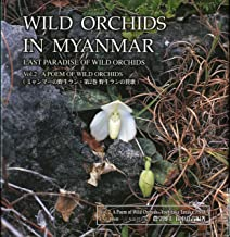Wild Orchids in Myanmar Vol 2: A Poem of Wild Orchids (Wild Orchids in Myanmar: Last Paradise of Wild Orchids)