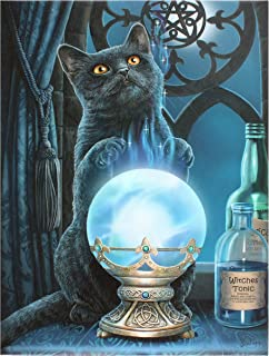 Enchanted Jewelry Witches Apprentice Cat Canvas Print by Lisa Parker
