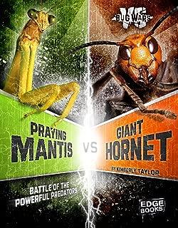 Praying Mantis vs. Giant Hornet: Battle of the Powerful Predators (Bug Wars)