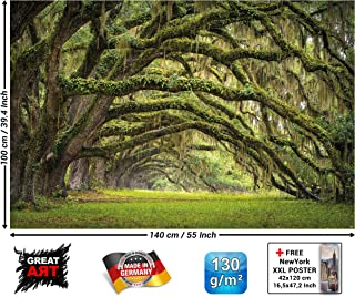 Poster – Oak Avenue – Wall Nature Mural Decoration Landscape Summer Forest Mystic Oaks Quercus Fairy Tale Alley Park Branches Paperhanging Wallpaper (55 x 39.4 Inch/ 140 x 100 cm)