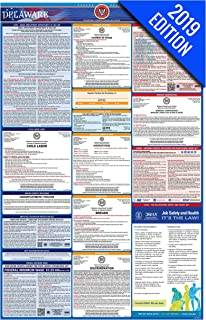 2019 Delaware Labor Law Poster – State, Federal, OSHA Compliant – Single Laminated Poster