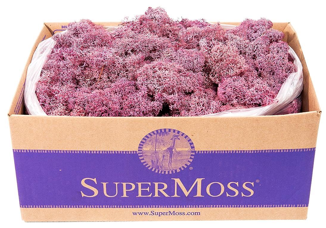 SuperMoss (25150) Reindeer Moss Preserved, Dusty Rose, 3 lbs