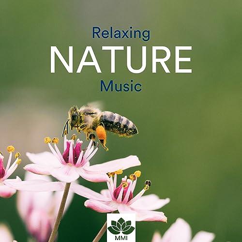 Relaxing Nature Music - Qi Gong, Yoga, Tai Chi, Reiki ...