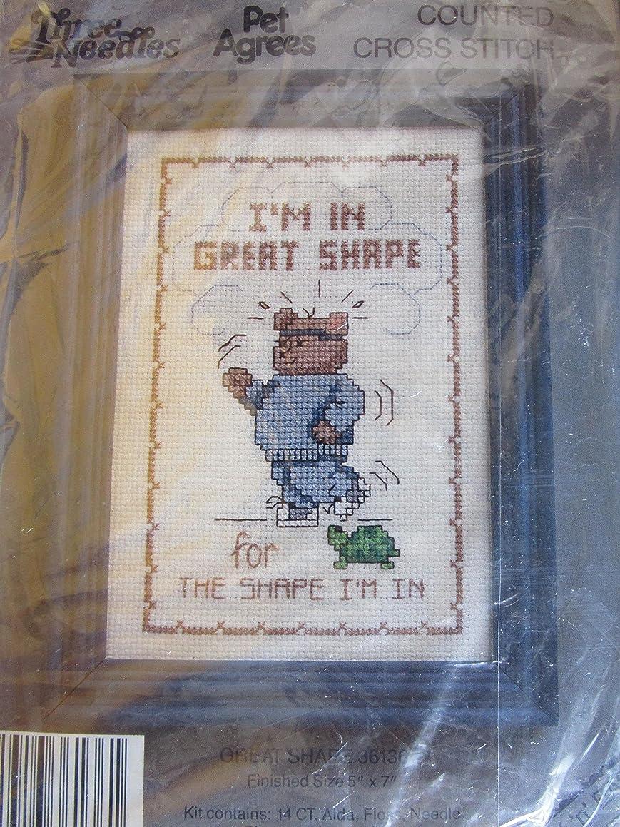 Great Shape Counted Cross Stitch Kit