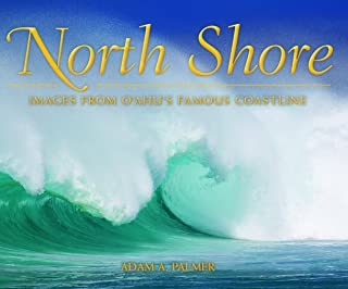 north shore industries
