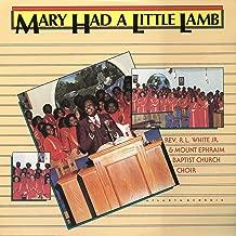 Best little lamb choir song Reviews