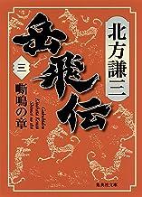 表紙: 岳飛伝 三 嘶鳴の章 (集英社文庫)   北方謙三