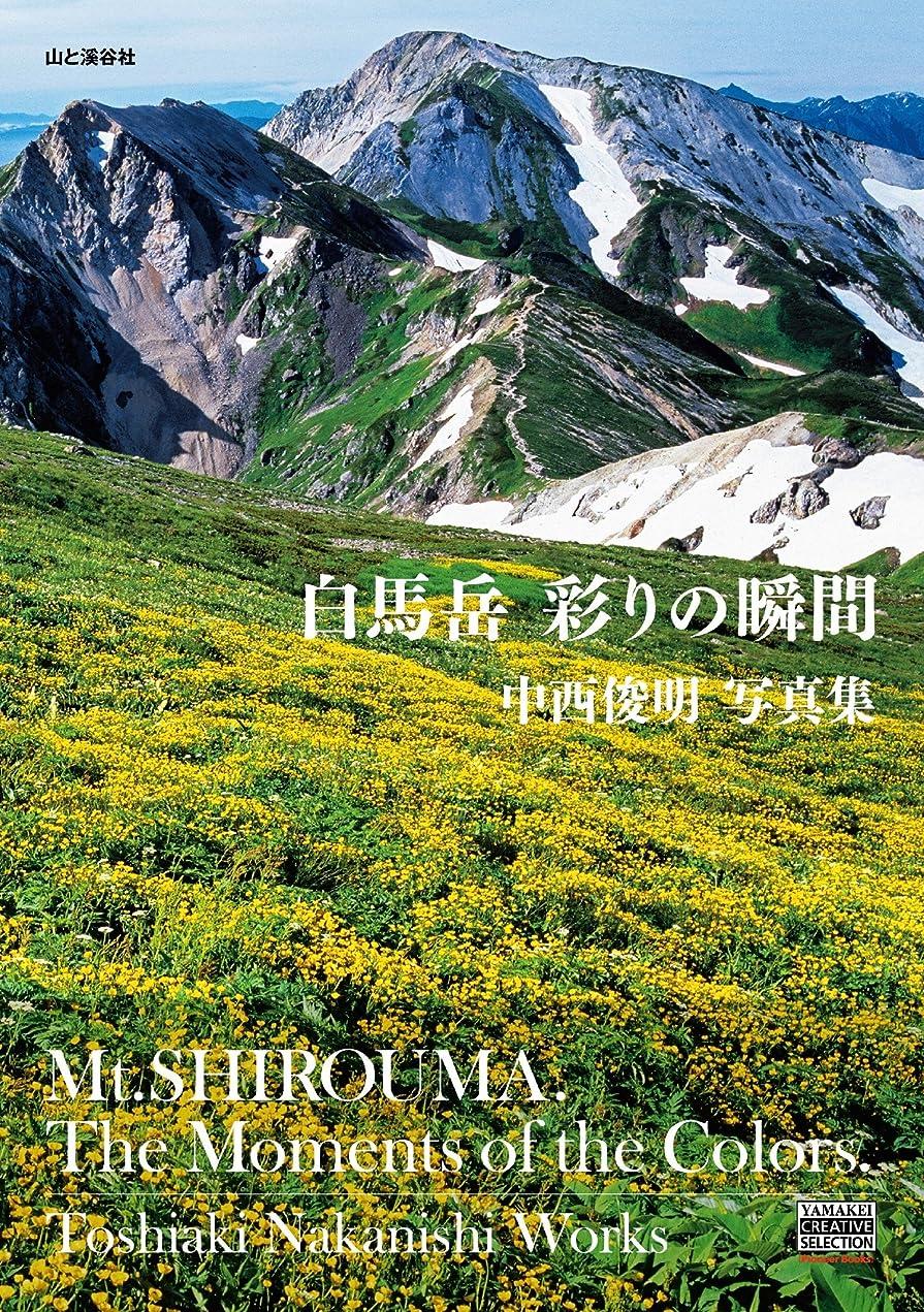 台無しに北米同化白馬岳 彩りの瞬間 YAMAKEI CREATIVE SELECTION