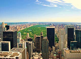 Wooden Jigsaw Puzzle Central Park Manhattan Night New York City USA 500-Pieces