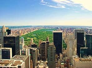 FKG Adult Jigsaw Puzzle Central Park Manhattan Night New York City USA 500-Pieces