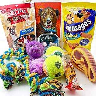 Dog Gift Box Basket for A Favorite Canine/Fur Baby - Send These Treats and Toys to a Furry Pet Friend! Great for Christmas, Birthdays, Get Well/Surgery Recovery.