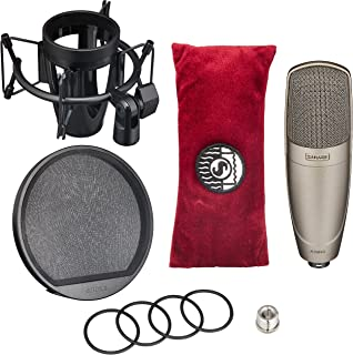 Shure KSM42/SG Large Dual-Diaphragm Side-Address Condenser Vocal Microphone