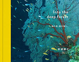 Into the deep forest  海の森、森の海へ。