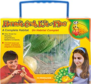Best hermit crab stuff for sale Reviews