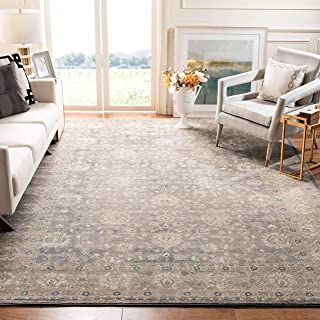 Safavieh Sofia Collection SOF330B Vintage Light Grey and Beige Distressed Area Rug (9` x 12`)