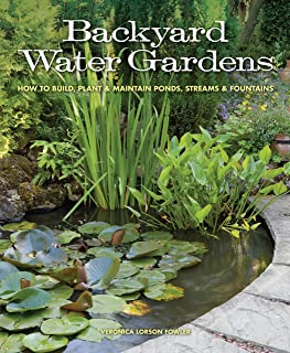 Best used water features Reviews