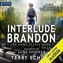 Interlude: Brandon: The Game Is Life, Book 3
