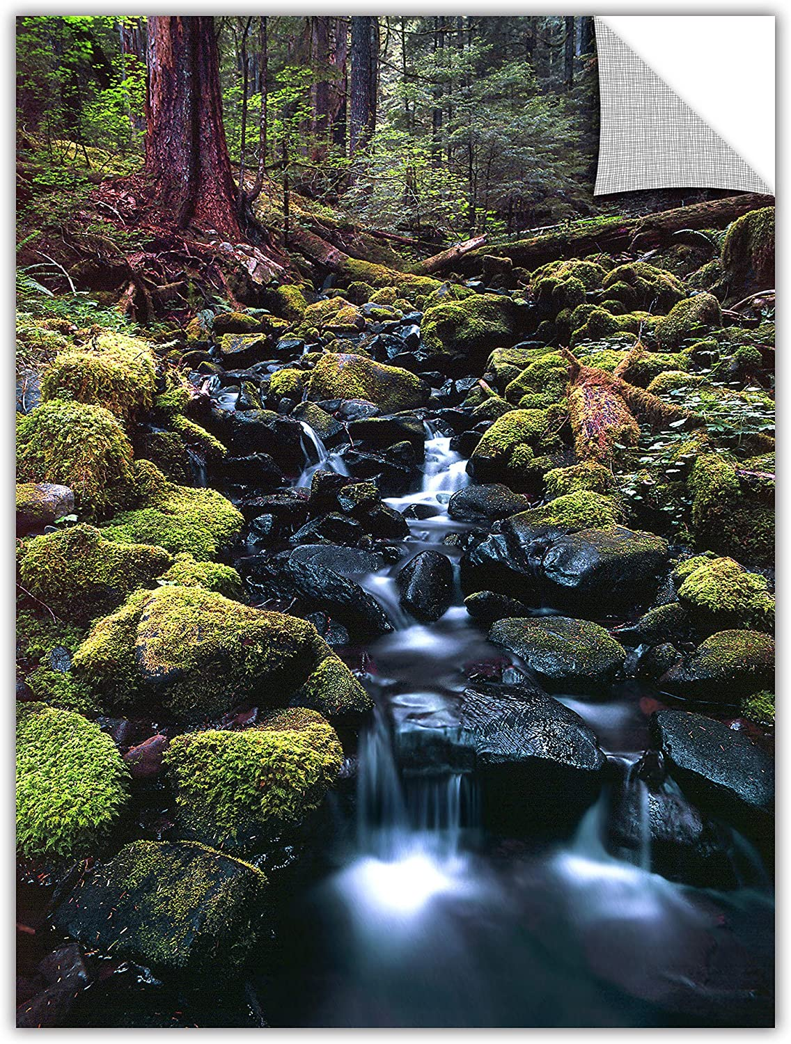 ArtWall Appealz Dean Uhlinger Rain Forest Morning Removable Graphic Wall Art, 18 by 24-Inch