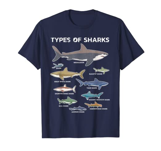 275c13d2 9 Types Of Sharks T-Shirt Educational Colorful Ocean Tee