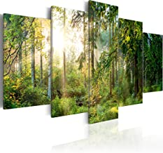 Amazon Fr Tableau Triptyque Nature